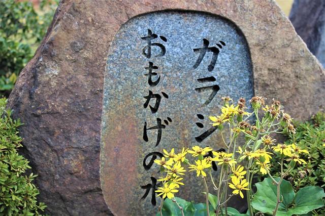 syoryuji-gojoin027
