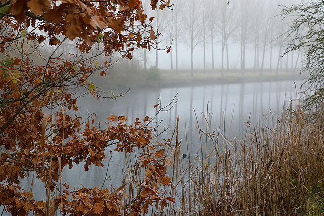 Photo nominated by the city of Beveren (Belgium) - autumn theme