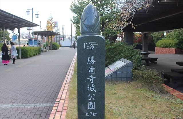 syoryuji-gojoin001