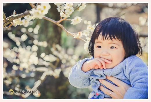 1歳のお誕生日記念の家族写真 梅の花と一緒に 2月(早春)