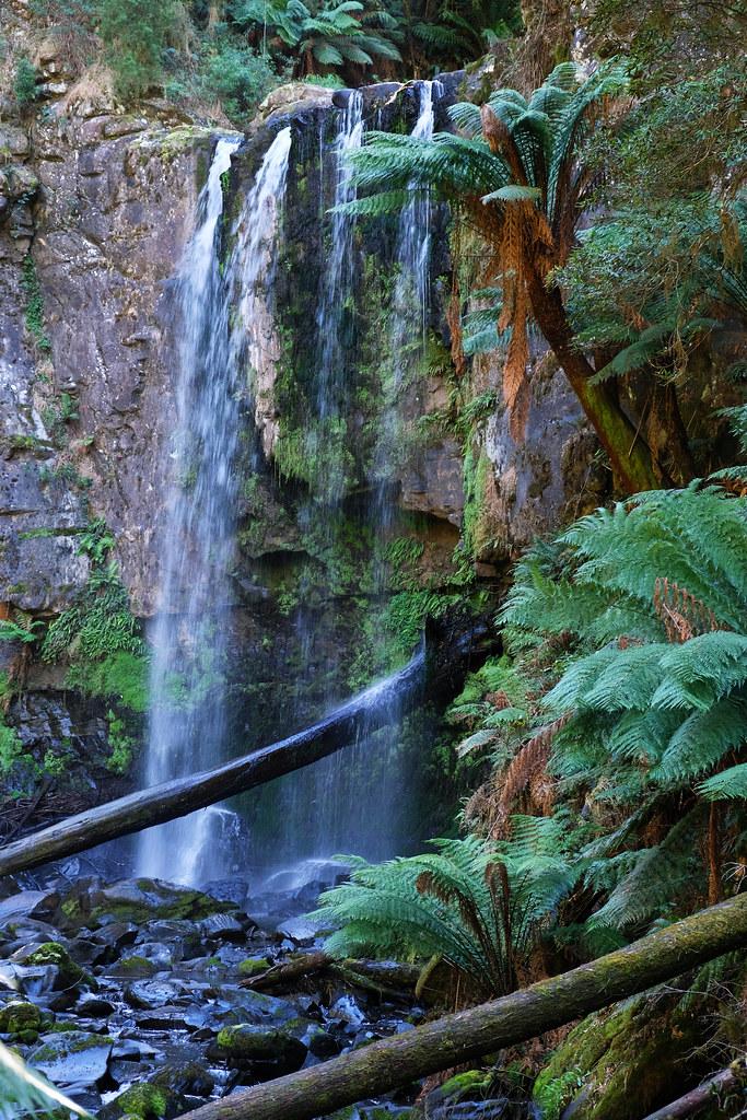 Short & Pretty Hikes In Great Otway: Hopetun Falls, Great Otway National Park, Victoria, Australia