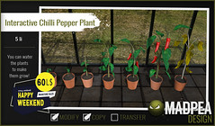 MadPea Interactive Chilli Pepper Plant  @HAPPY WEEKEND!