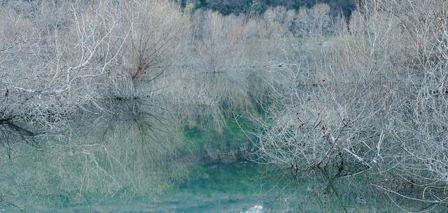 lake in winter flood