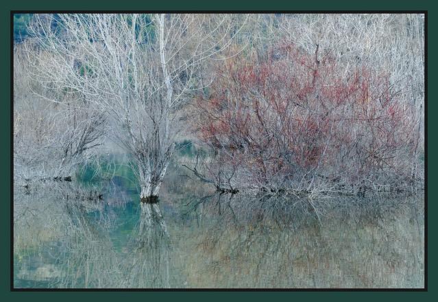 lac en hiver (2)