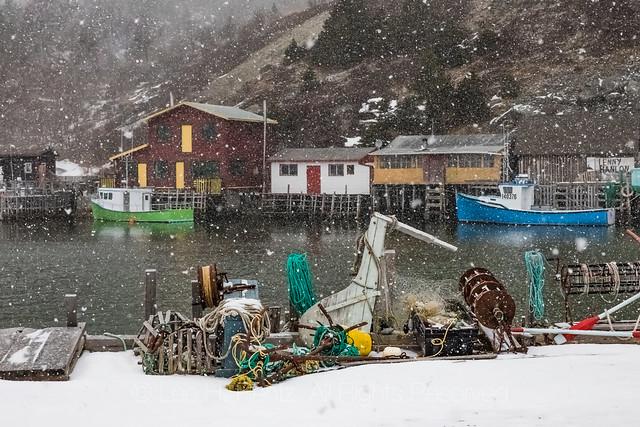 Snow Falling in Quidi Vidi Village