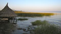 Lake Awasa