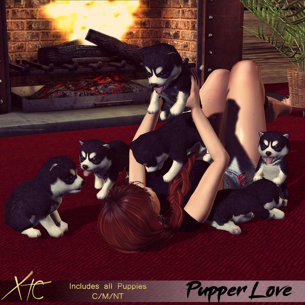 .Pupper Love. @ – Pose Fair