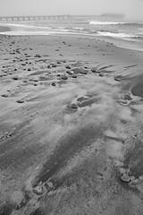 Coastal Patterns
