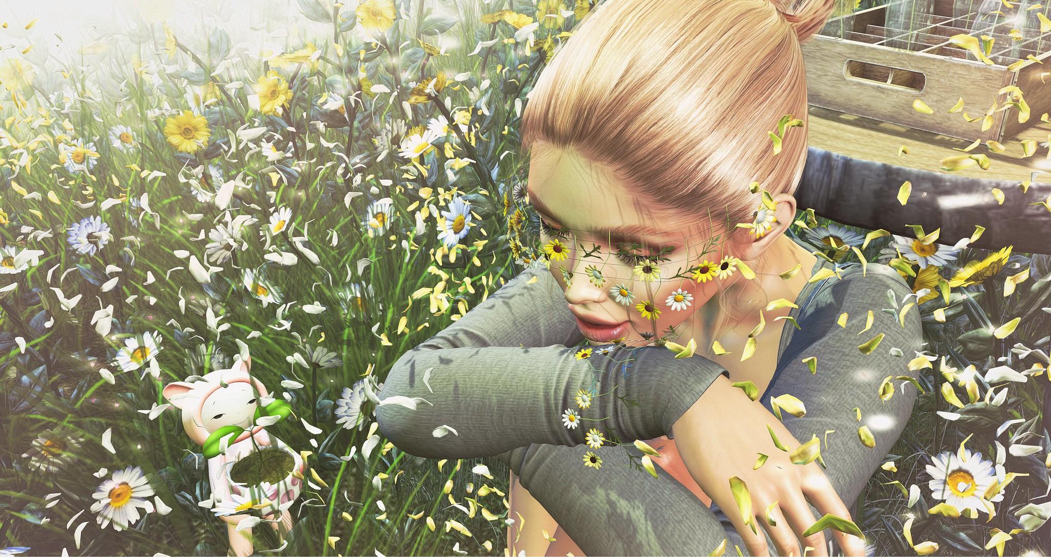 Flower & Music