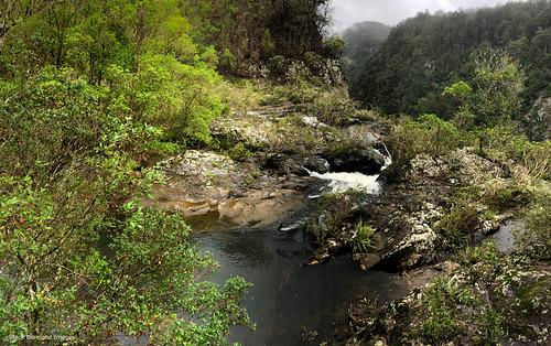 elands bulgaplateau nsw australia midnorthcoast manningvalley landscape ellenboroughfalls ellenboroughriver
