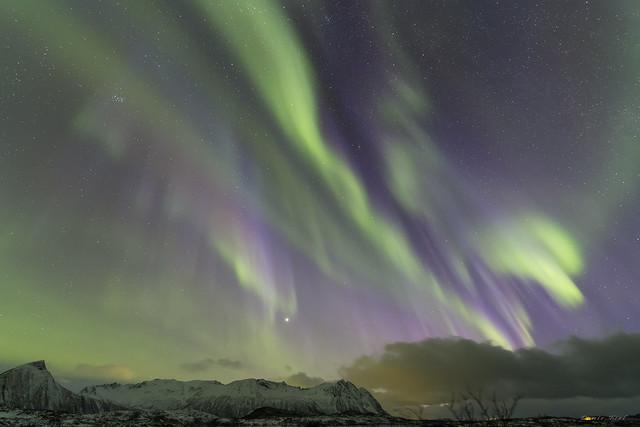 Aurore boréale bleue aux Lofoten, Norvège - 12 -
