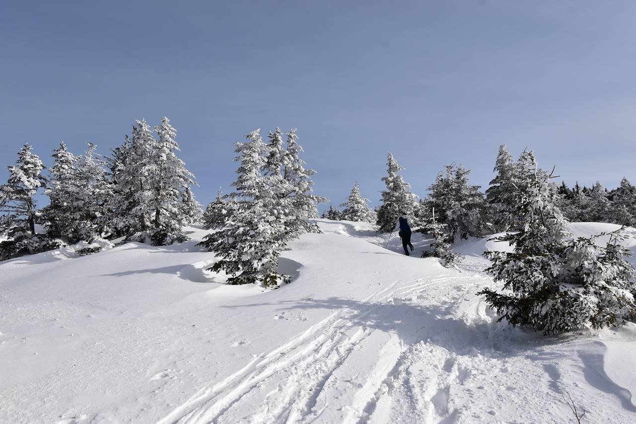 雪の四阿山登山