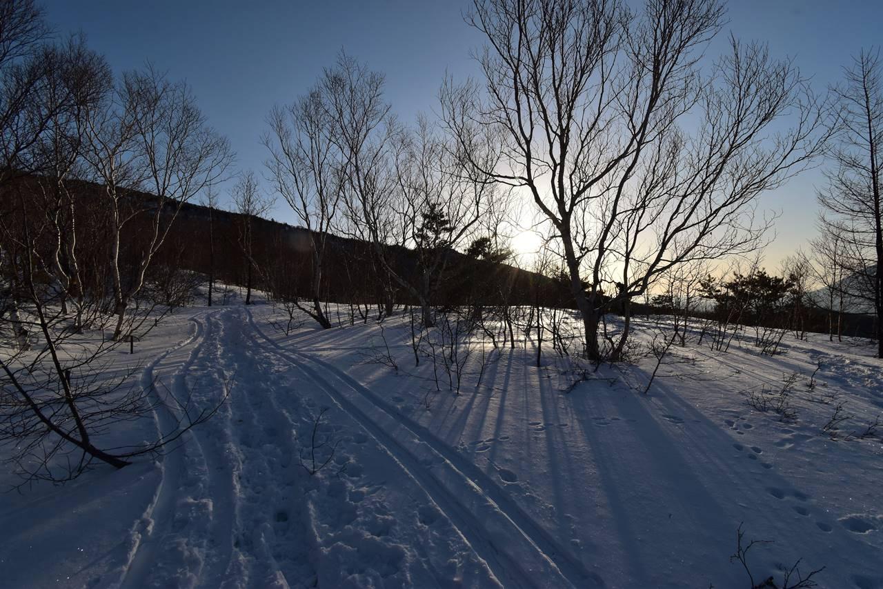 四阿山 森から迎える朝日