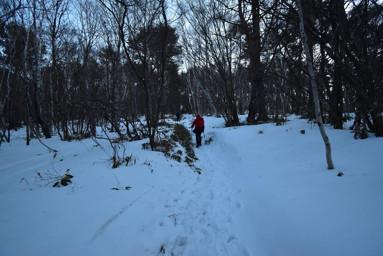 四阿山登山道