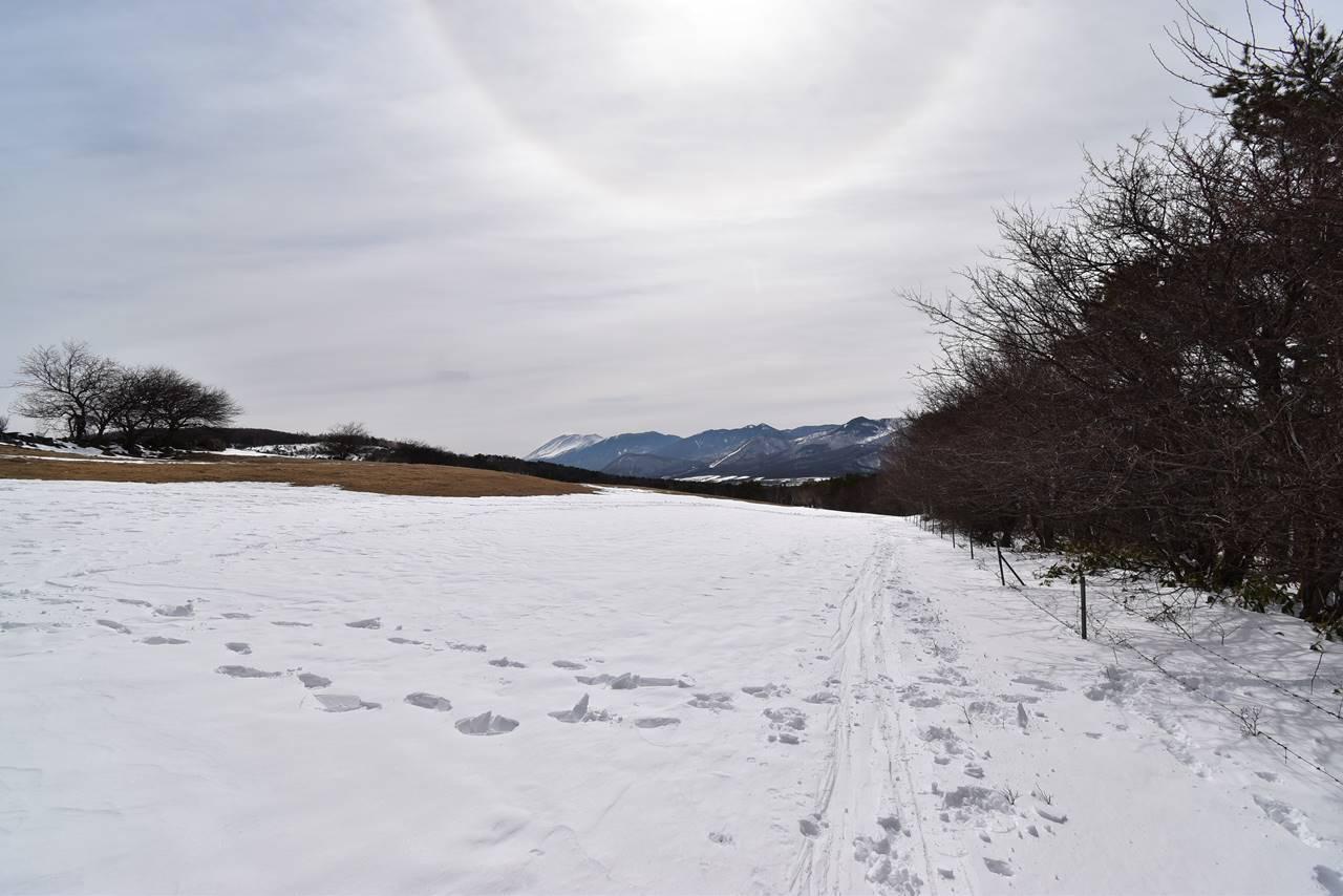 四阿山登山 雪の牧場