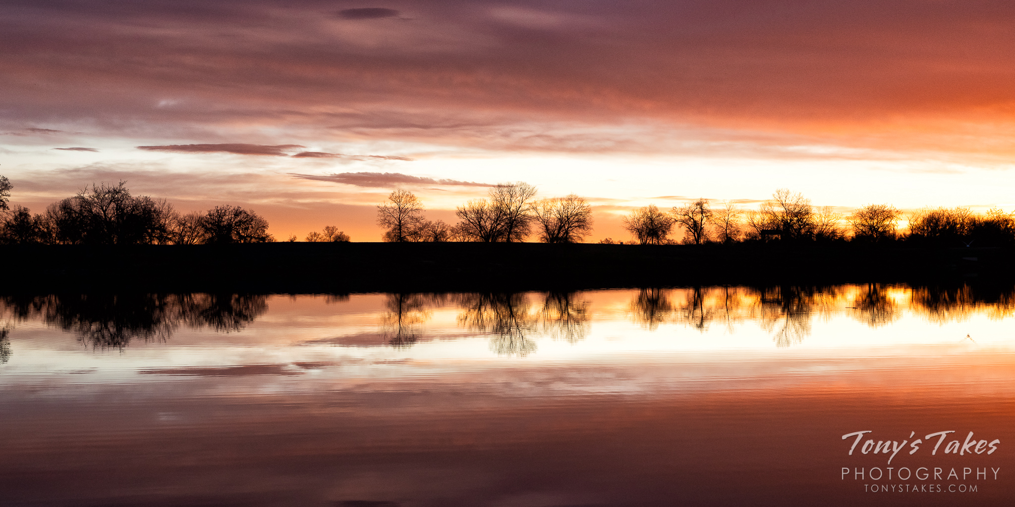 Sunrise and silhouetted trees are reflected on a pond in Adams County, Colorado. (© Tony's Takes)
