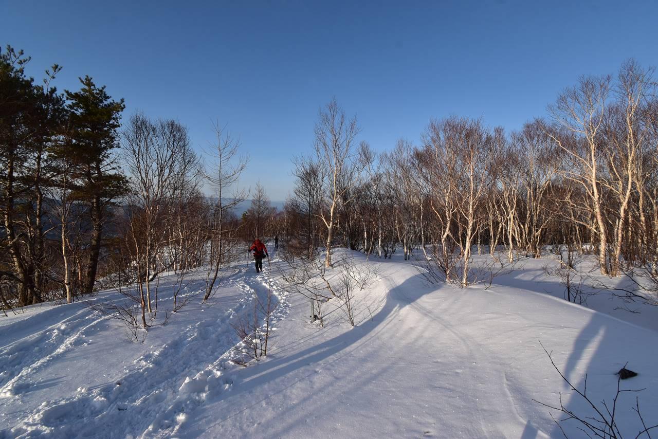 四阿山 雪の森を登っていく