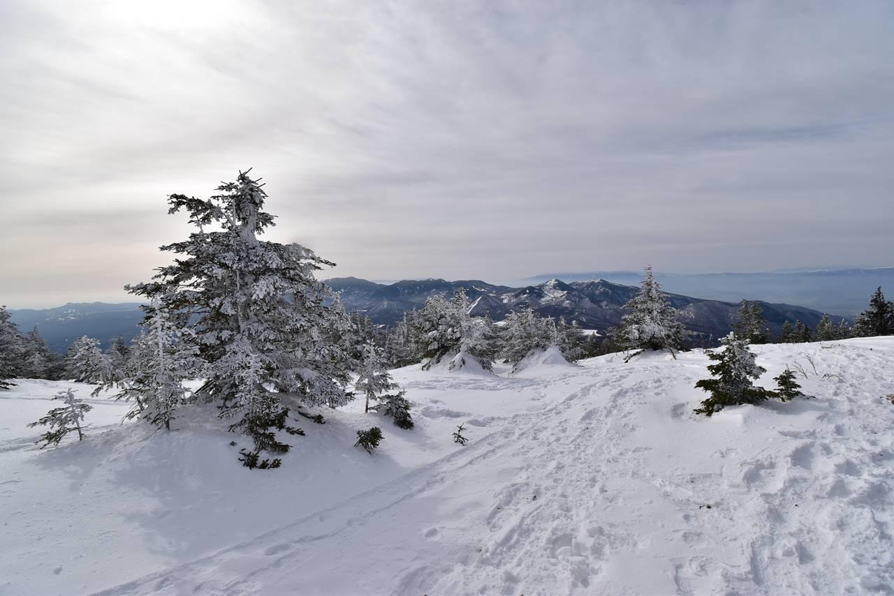 四阿山の霧氷と雪原風景