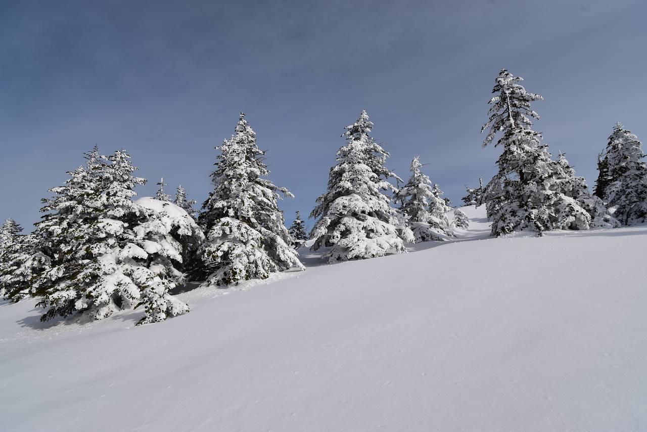 四阿山のクリスマスツリー