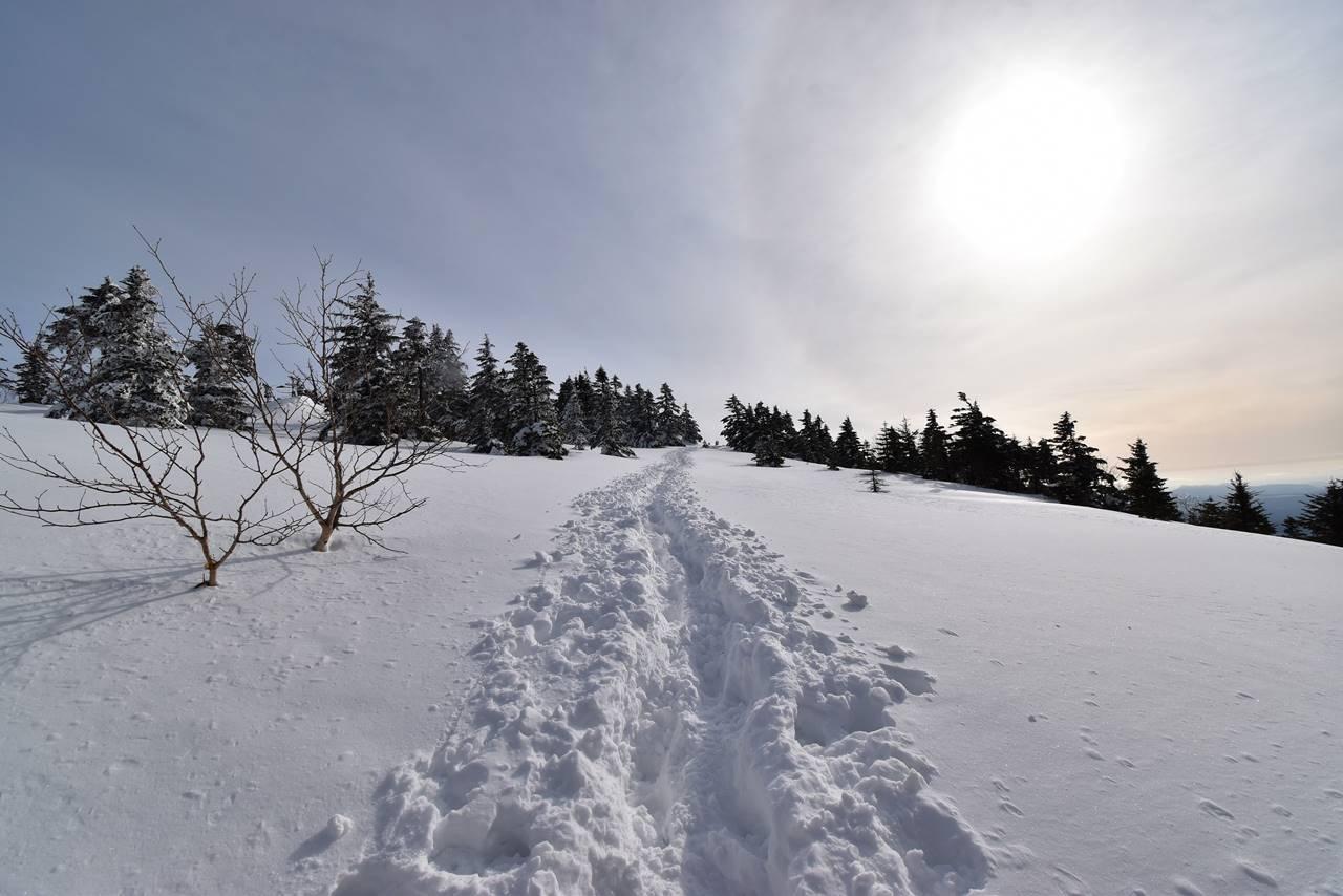 冬の四阿山 ラッセル雪山登山