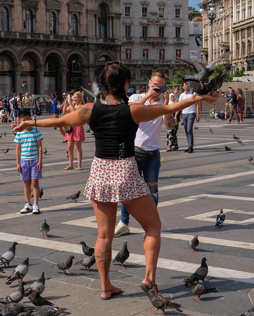 Turisti & piccioni