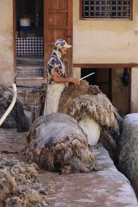 Fes, Tannery Sidi Moussa