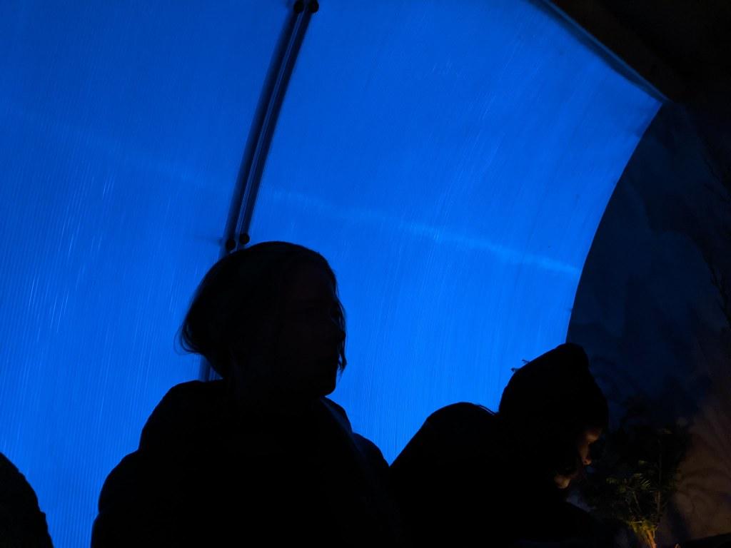 Flora Sauna Blue Sunset