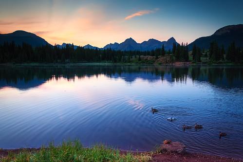 colorado rockymountains silverton sanjuanmountains lake molaslake morning dawn sunrise ducks summer camping outdoors outdoorrecreation travelcolorado