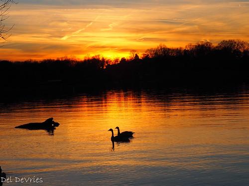 oldhickorylake tennessee wilsoncounty sunset oldhickory unitedstatesofamerica