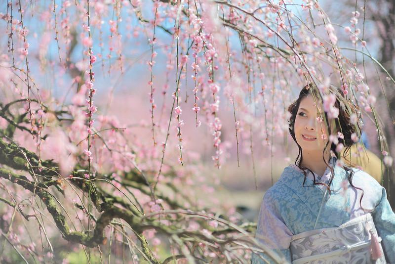 Portrait with plum blossom
