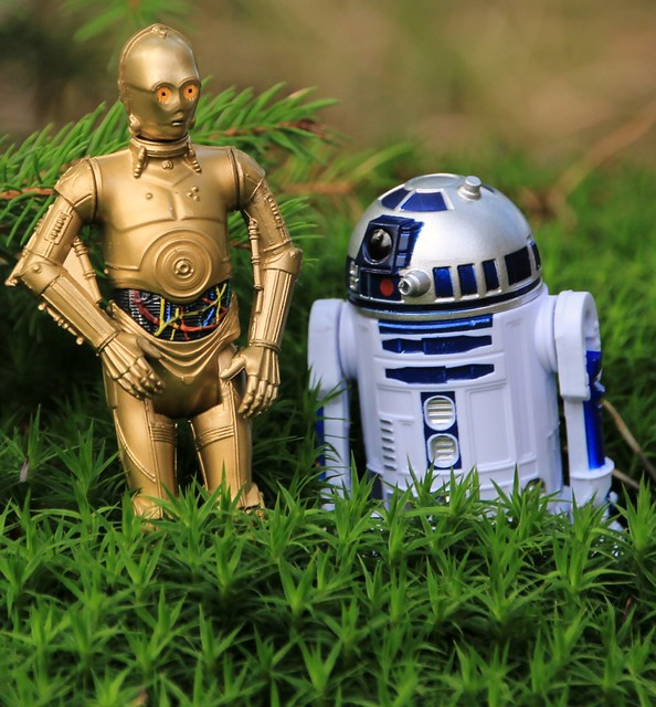 R2D2,C3PO in the Wood