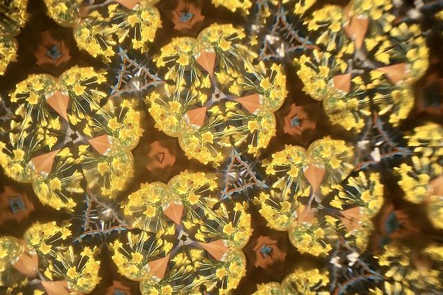 Kaleidoscope fun