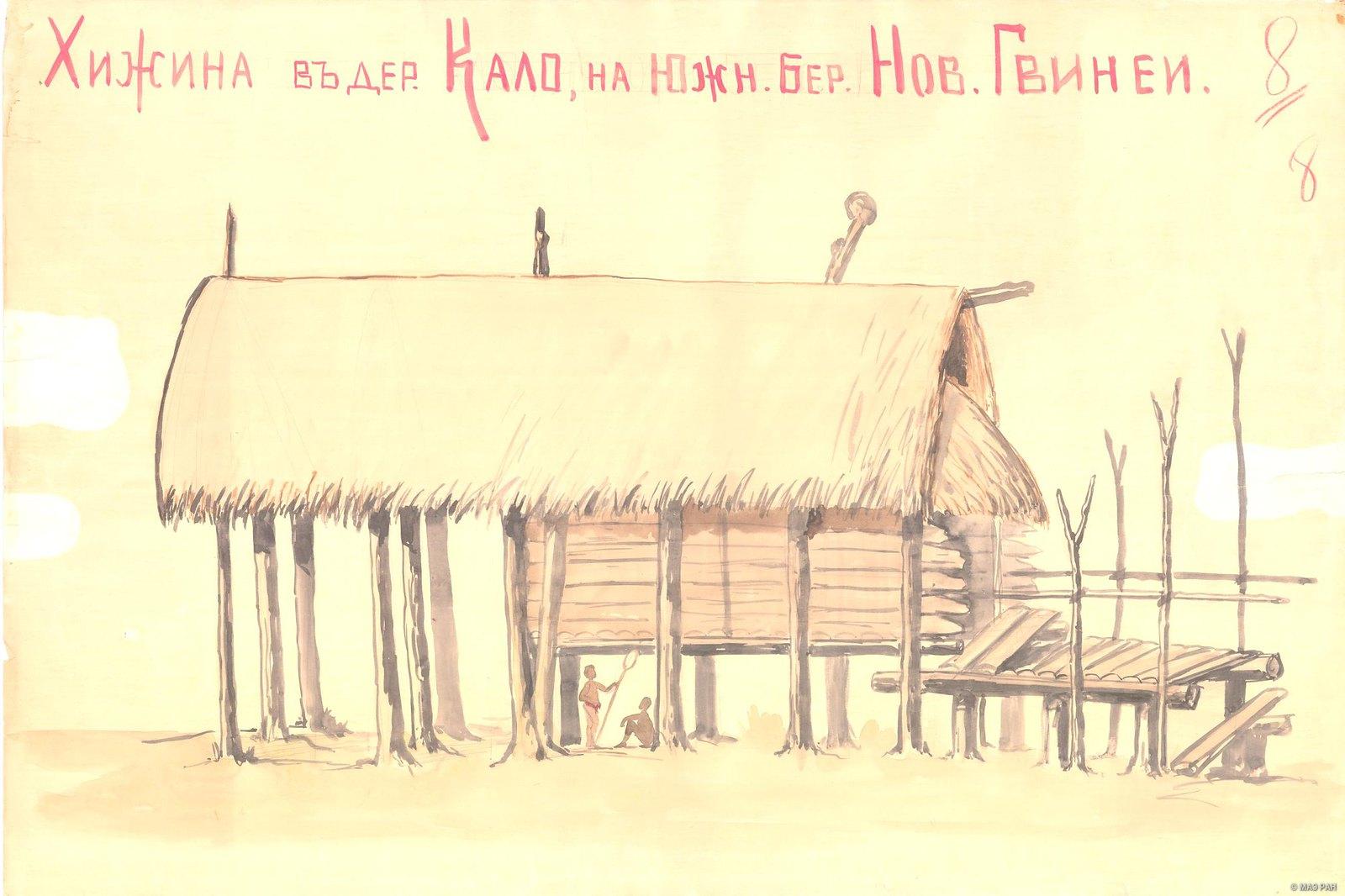 1880-е. Хижина в деревне Кало. Папуасы Новой Гвинеи