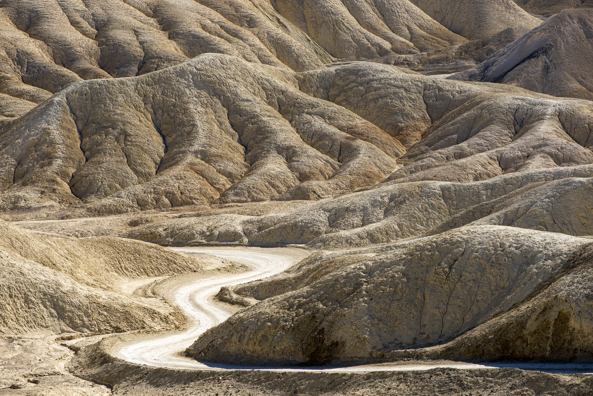 Death Valley - 20 Horse Team Canyon 4
