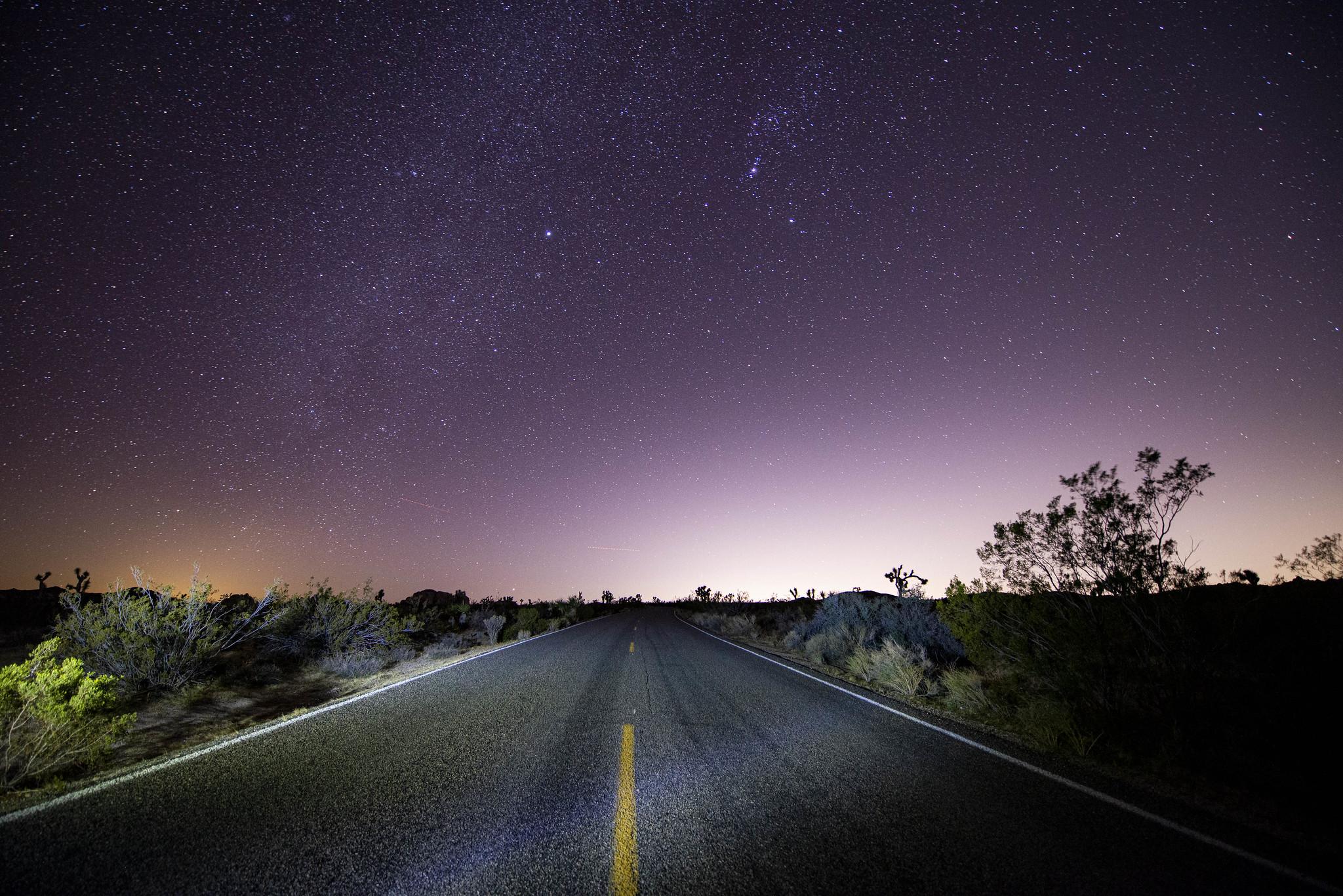 Joshua Tree - Night Road