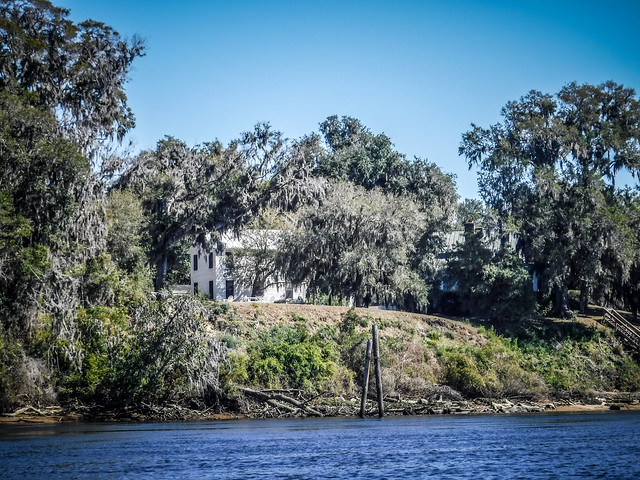 Edisto River - Penny Creek to Willtown Bluff