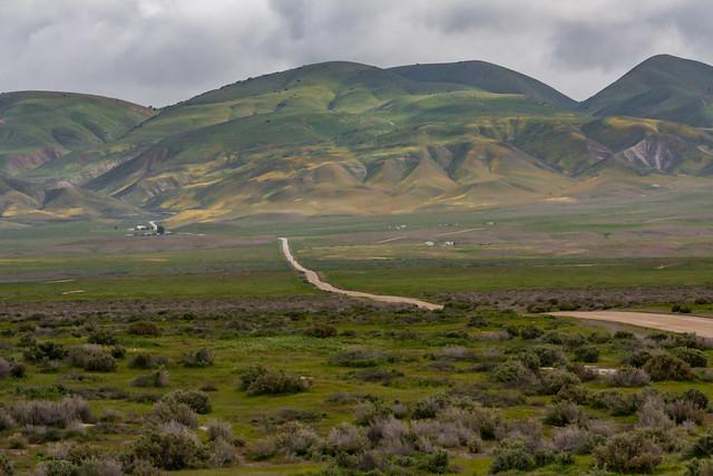 Carrizo Plain 2010 14