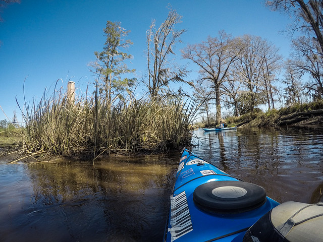 Edisto River - Penny Creek to Willtown Landing