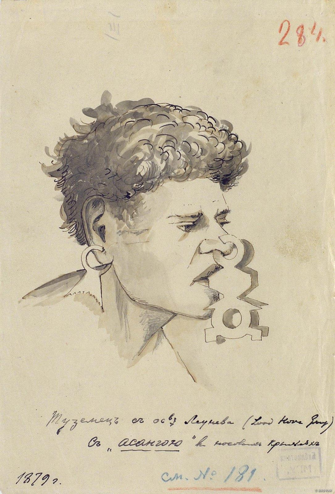 1879.  Портрет мужчины с носовым украшением. Меланезийцы. Австралия