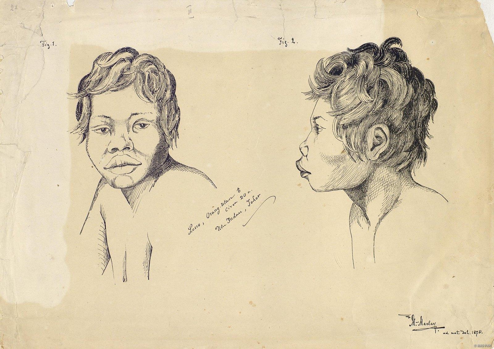 1875. Портрет молодого мужчины Лосо из племени оран-утан в возрасте около 20 лет. Малайцы. Малайзия