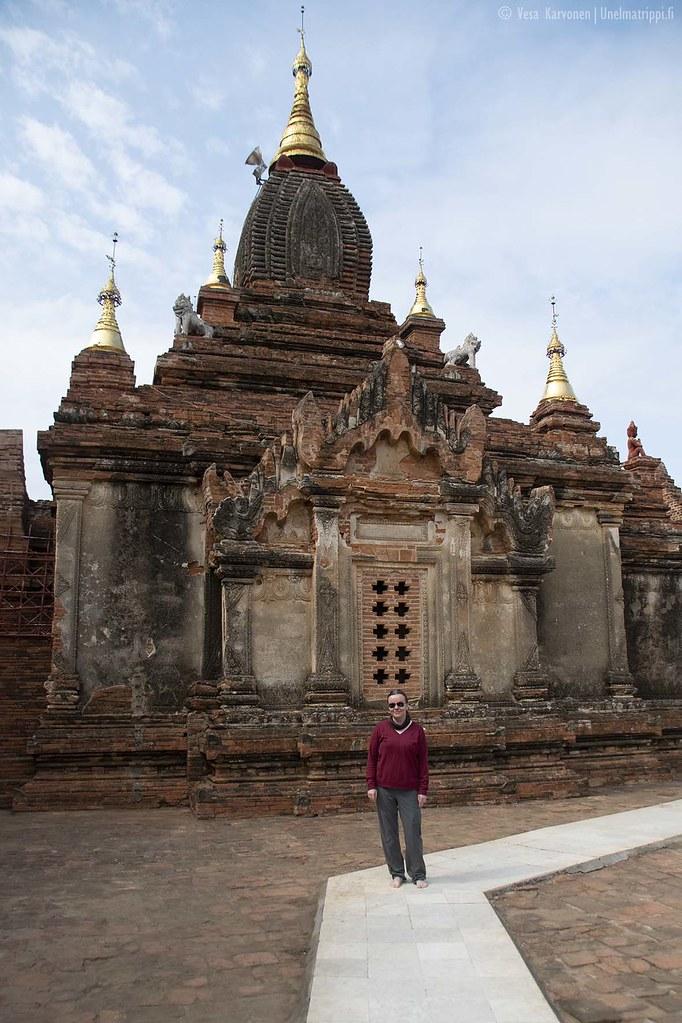 Jenni Dhammayazaka-pagodilla