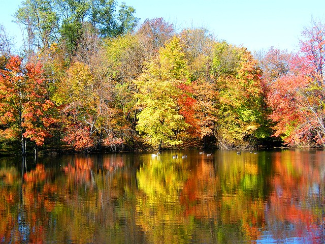 Rockland Lake Colors