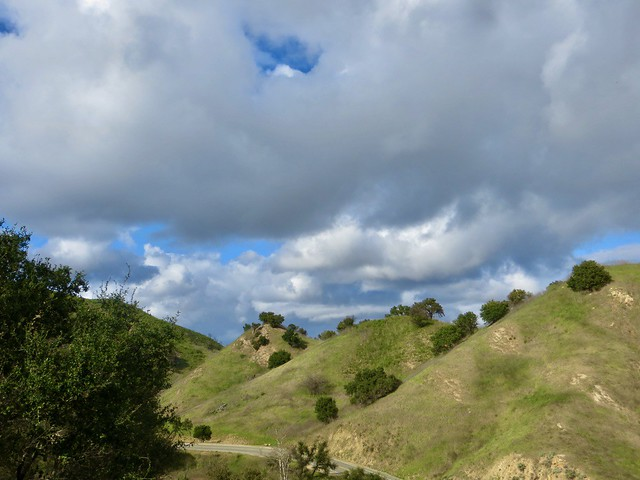 the view from Mulholland Highway
