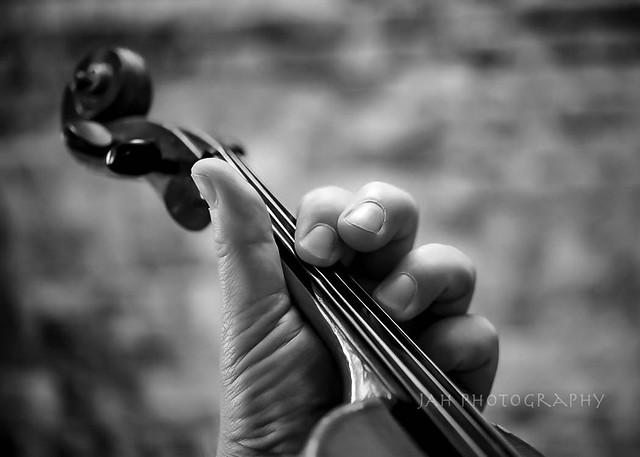 Fiddler Pentalogy