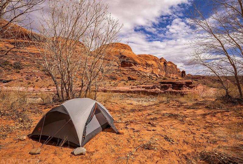 Trachyte Creek Campsite #2