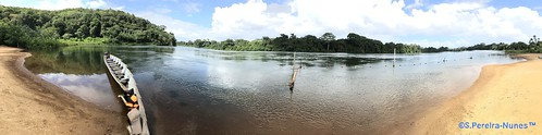 fantasticnature suriname riosuriname bergendalresort