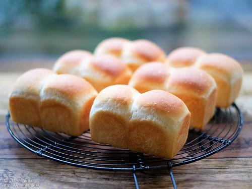 ホシノ丹沢酵母のミニ食パン 20200307-DSCT3163 (2)
