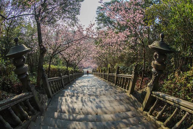 located in the hills of Neihu is Bishanyan Kaizhang Shengwang Temple