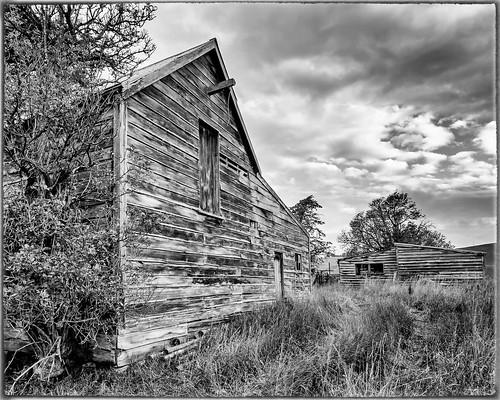 2020tour decay open slideshow flickr facebook farm nztour sheds kakanui housesitting oamaru otagoregion newzealand landscapeseascape