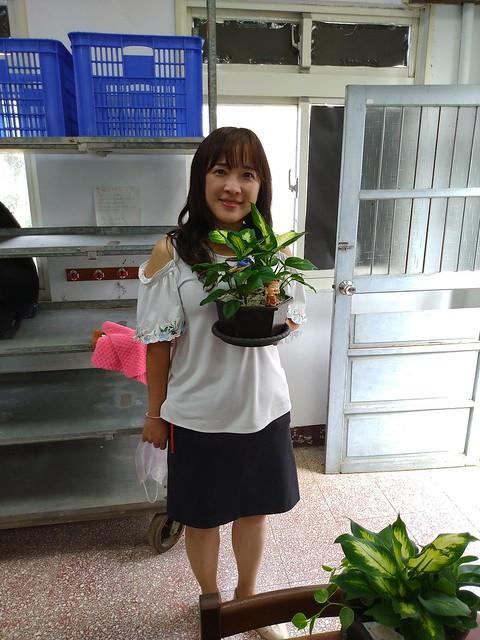 20191016 均質化組合盆栽研習 (綠之源農場)